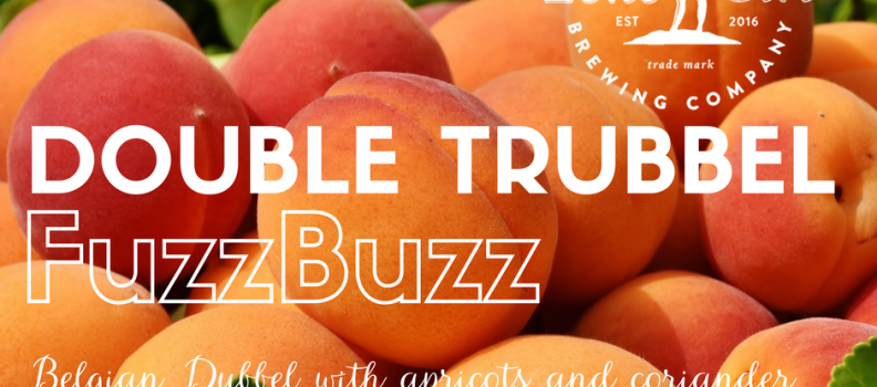 Double Trubbel FuzzBuzz – from our Belgian Dubbel Series